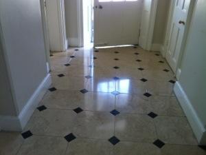 Marble floor cleaner